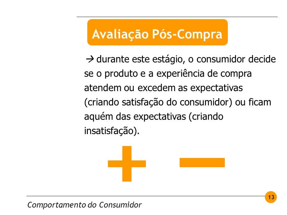 Comportamento do Consumidor 13 durante este estágio, o consumidor decide se o produto e a experiência de compra atendem ou excedem as expectativas (cr