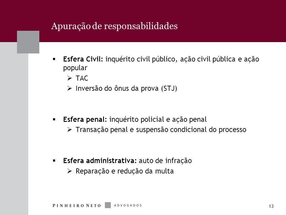 13 Apuração de responsabilidades Esfera Civil: inquérito civil público, ação civil pública e ação popular TAC Inversão do ônus da prova (STJ) Esfera p