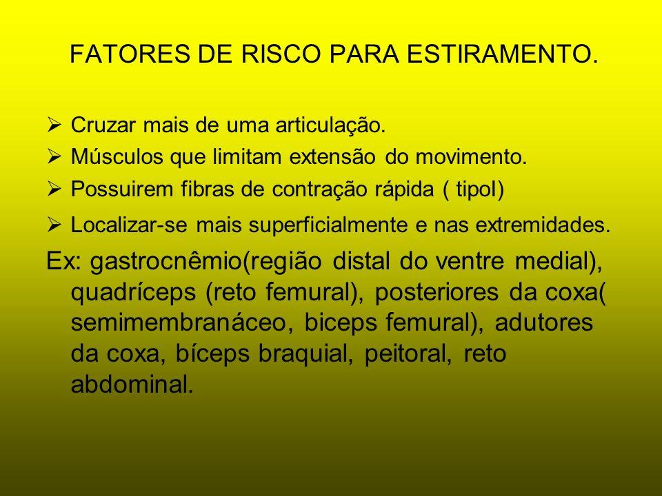 FATORES DE RISCO PARA ESTIRAMENTO. Cruzar mais de uma articulação. Músculos que limitam extensão do movimento. Possuirem fibras de contração rápida (