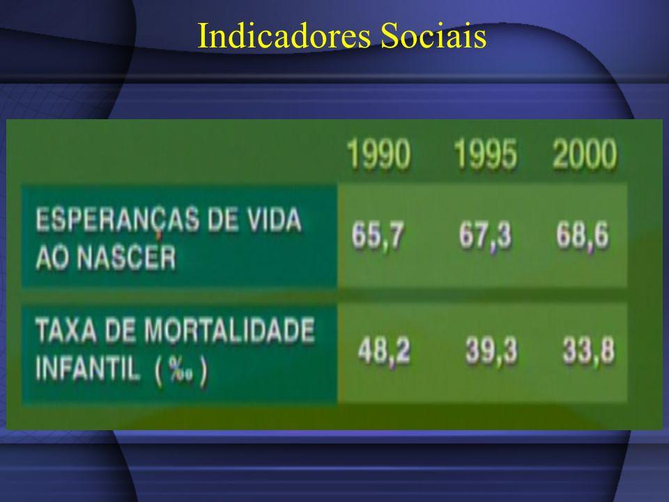 População Economicamente Ativa - PEA Para o IBGE, a população em idade ativa é composta de uma parte economicamente ativa e de outra inativa.