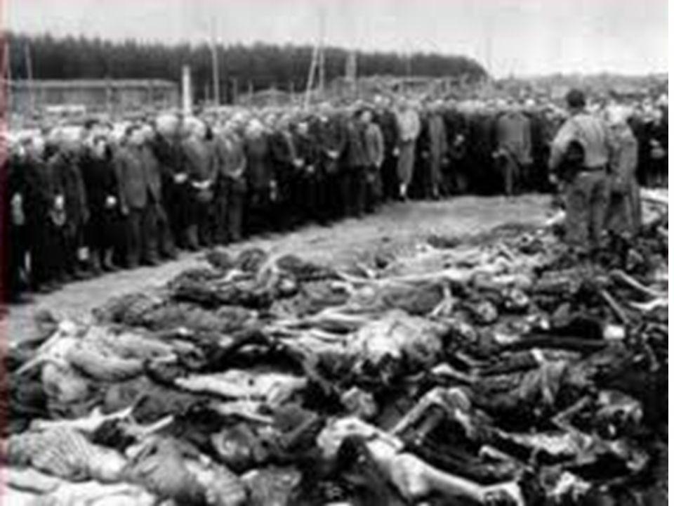 Impressões antagônicas Dramas humanos, massacres e guerras.
