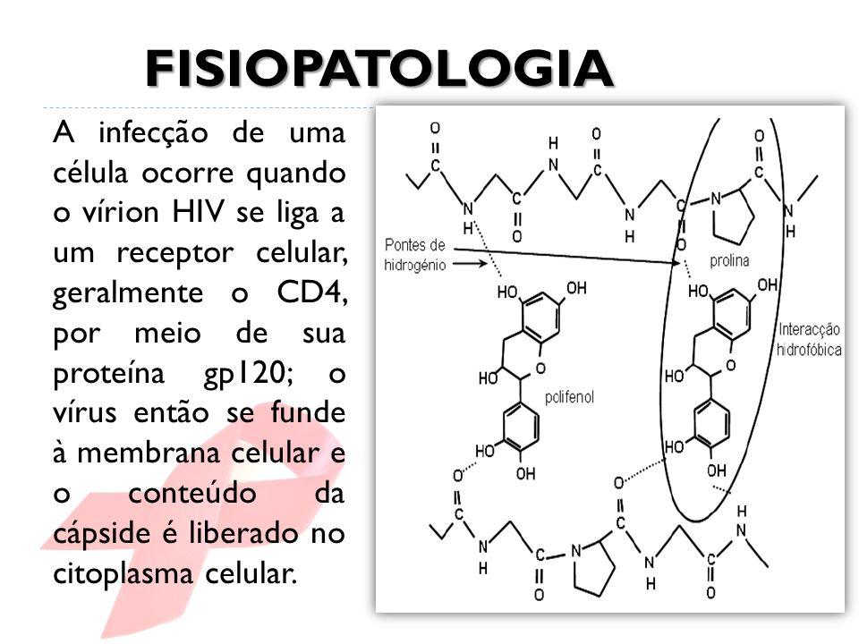 A infecção de uma célula ocorre quando o vírion HIV se liga a um receptor celular, geralmente o CD4, por meio de sua proteína gp120; o vírus então se