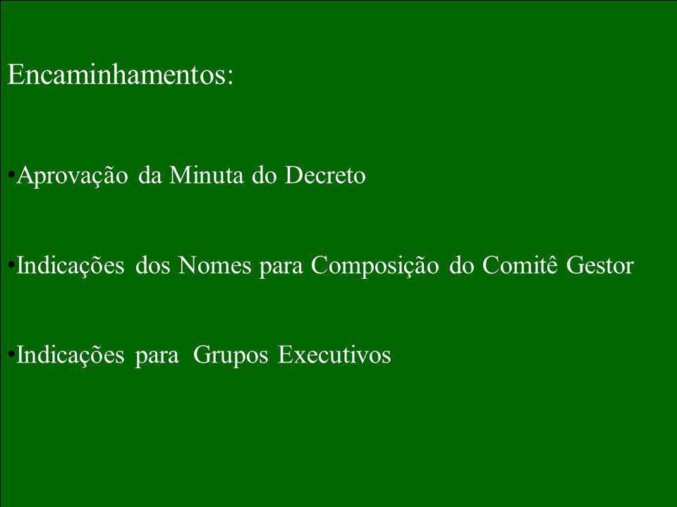 Encaminhamentos: Aprovação da Minuta do Decreto Indicações dos Nomes para Composição do Comitê Gestor Indicações para Grupos Executivos