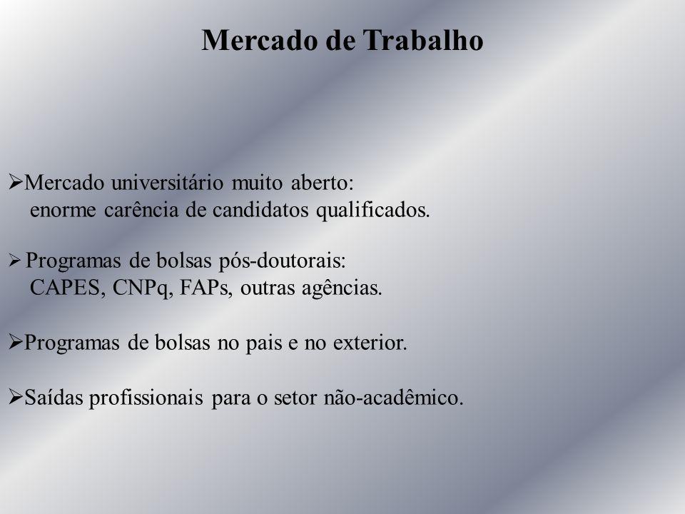 Ø Mercado universitário muito aberto: enorme carência de candidatos qualificados. Ø Programas de bolsas pós-doutorais: CAPES, CNPq, FAPs, outras agênc