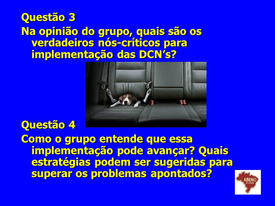 Questão 3 Na opinião do grupo, quais são os verdadeiros nós-críticos para implementação das DCNs? Questão 4 Como o grupo entende que essa implementaçã