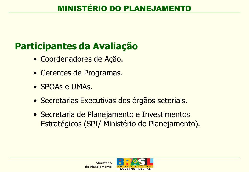 MINISTÉRIO DO PLANEJAMENTO Participantes da Avaliação Coordenadores de Ação. Gerentes de Programas. SPOAs e UMAs. Secretarias Executivas dos órgãos se