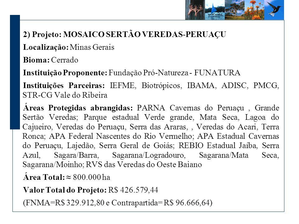 2) Projeto: MOSAICO SERTÃO VEREDAS-PERUAÇU Localização: Minas Gerais Bioma: Cerrado Instituição Proponente: Fundação Pró-Natureza - FUNATURA Instituiç
