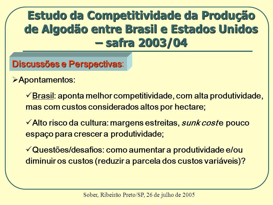Discussões e Perspectivas Discussões e Perspectivas: Apontamentos: Brasil: aponta melhor competitividade, com alta produtividade, mas com custos consi