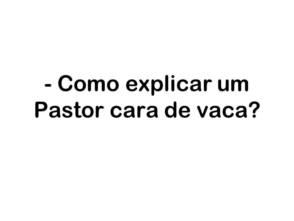 - Como explicar um Pastor cara de vaca?