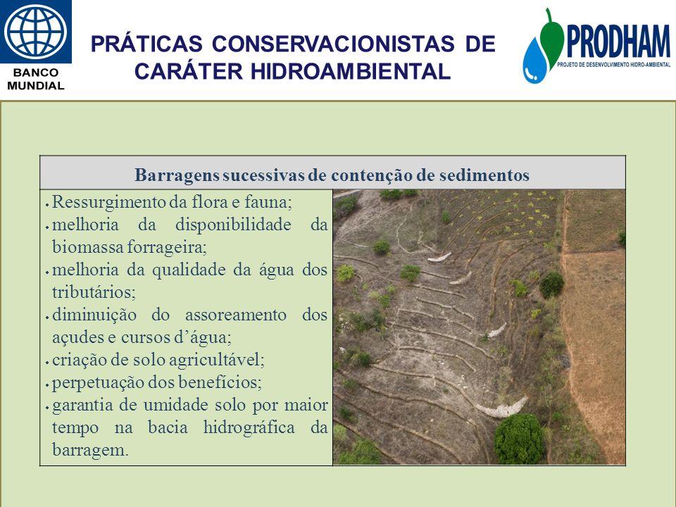 Barragens sucessivas de contenção de sedimentos Ressurgimento da flora e fauna; melhoria da disponibilidade da biomassa forrageira; melhoria da qualid