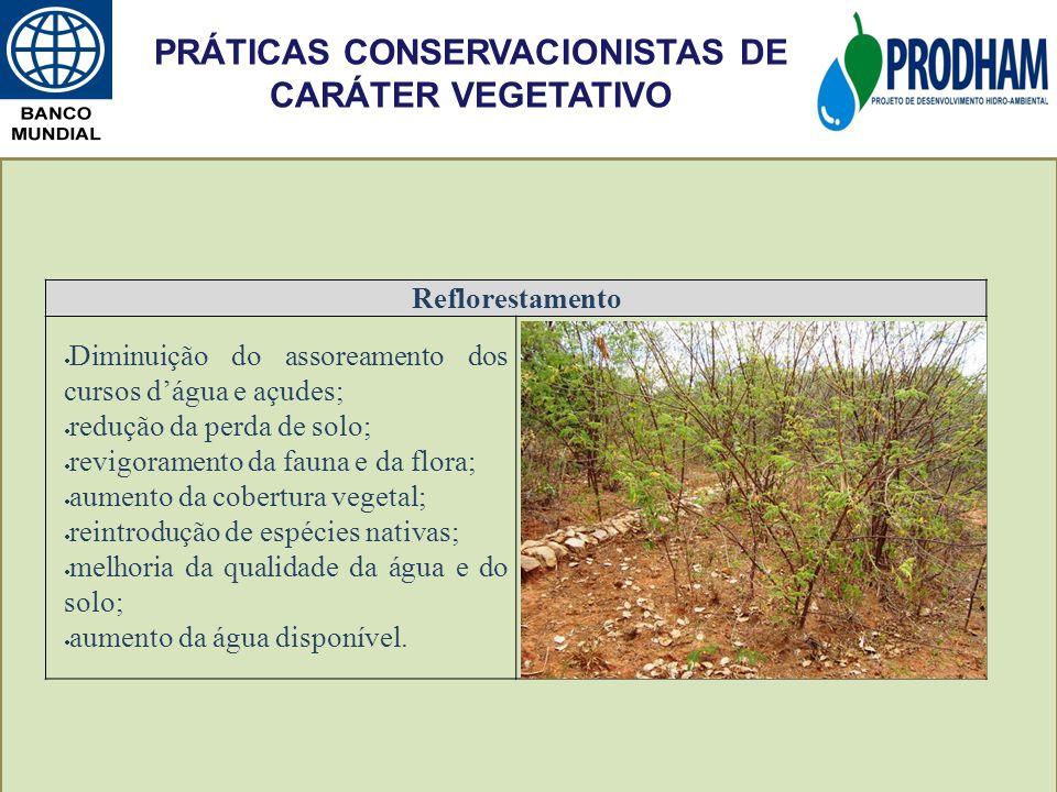 Reflorestamento Diminuição do assoreamento dos cursos dágua e açudes; redução da perda de solo; revigoramento da fauna e da flora; aumento da cobertur