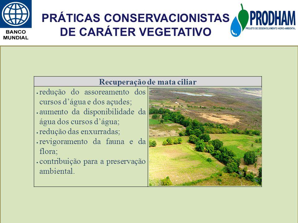 Recuperação de mata ciliar redução do assoreamento dos cursos dágua e dos açudes; aumento da disponibilidade da água dos cursos dágua; redução das enx
