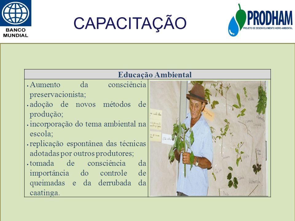 Educação Ambiental Aumento da consciência preservacionista; adoção de novos métodos de produção; incorporação do tema ambiental na escola; replicação