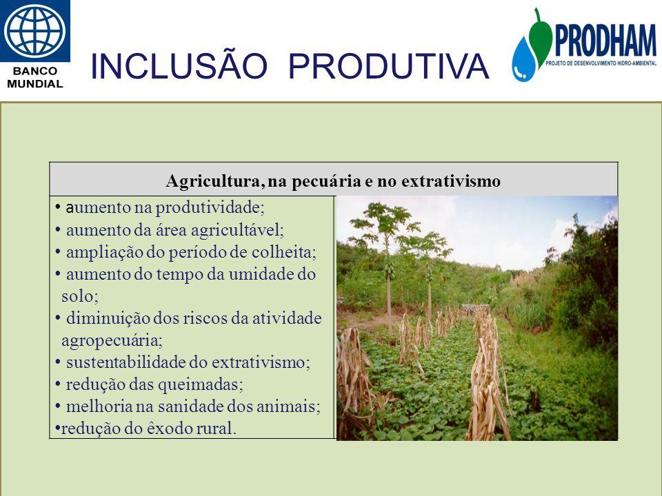 Agricultura, na pecuária e no extrativismo a umento na produtividade; aumento da área agricultável; ampliação do período de colheita; aumento do tempo