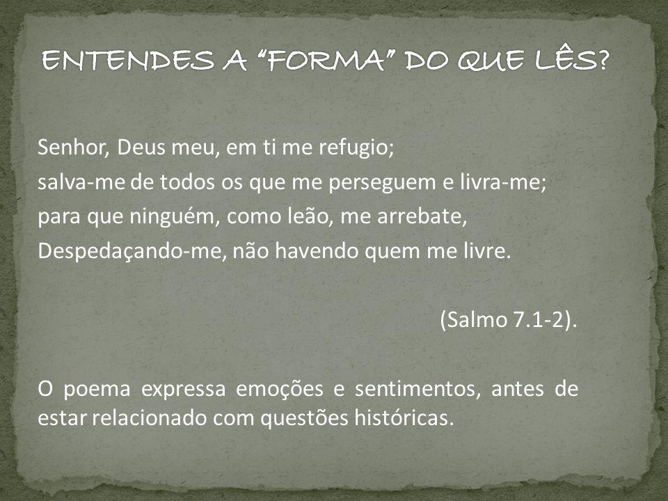 Senhor, Deus meu, em ti me refugio; salva-me de todos os que me perseguem e livra-me; para que ninguém, como leão, me arrebate, Despedaçando-me, não h