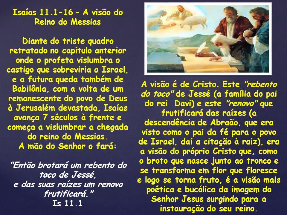 Isaías 11.1-16 – A visão do Reino do Messias Diante do triste quadro retratado no capítulo anterior onde o profeta vislumbra o castigo que sobreviria