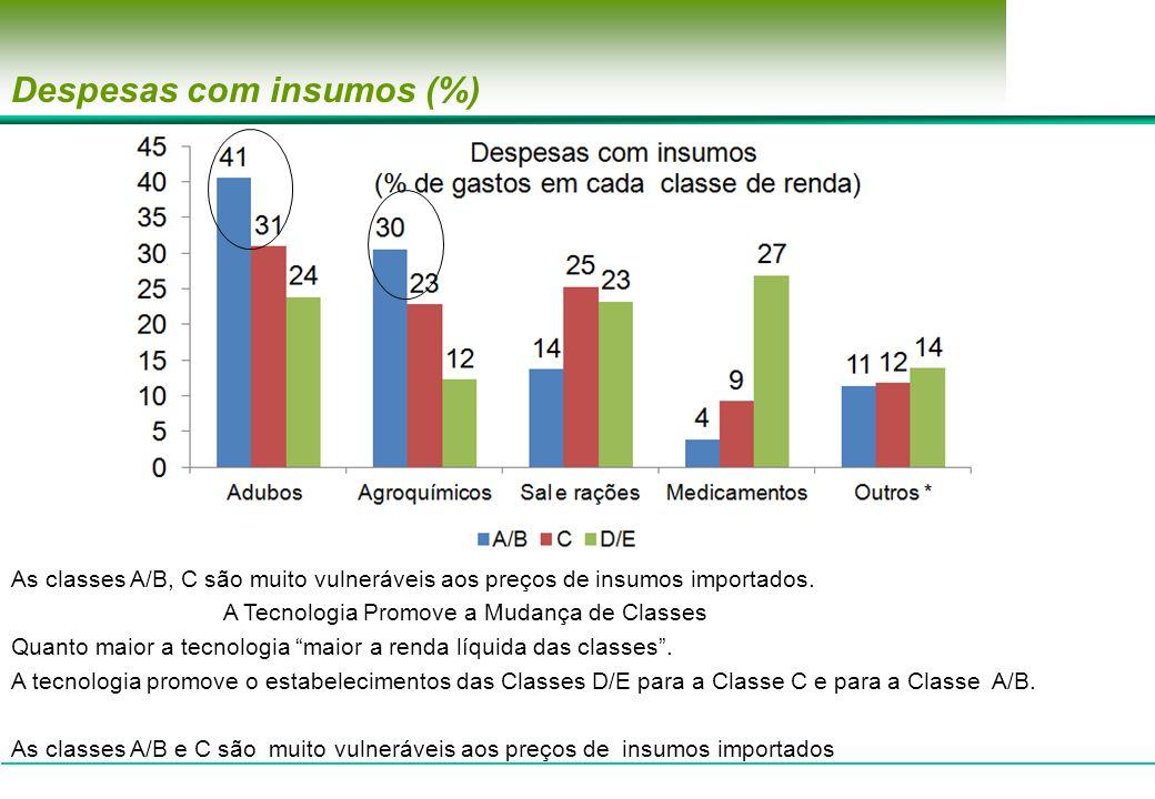 Despesas com insumos (%) As classes A/B, C são muito vulneráveis aos preços de insumos importados. A Tecnologia Promove a Mudança de Classes Quanto ma