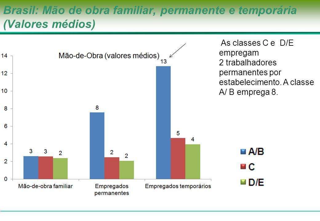 Brasil: Mão de obra familiar, permanente e temporária (Valores médios) As classes C e D/E empregam 2 trabalhadores permanentes por estabelecimento. A