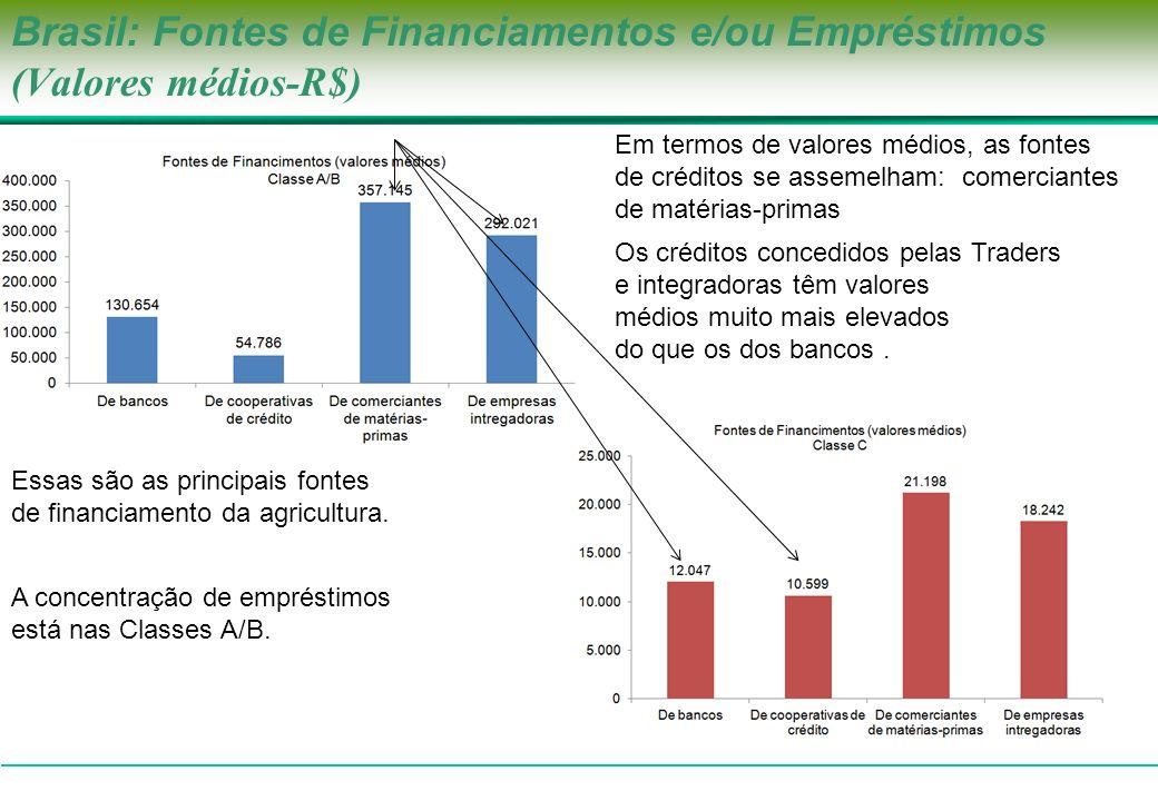 Brasil: Fontes de Financiamentos e/ou Empréstimos (Valores médios-R$) Em termos de valores médios, as fontes de créditos se assemelham: comerciantes d