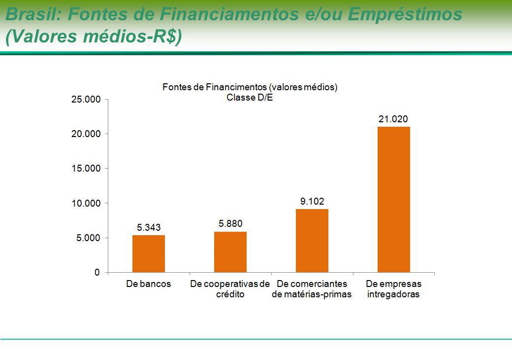 Brasil: Fontes de Financiamentos e/ou Empréstimos (Valores médios-R$)