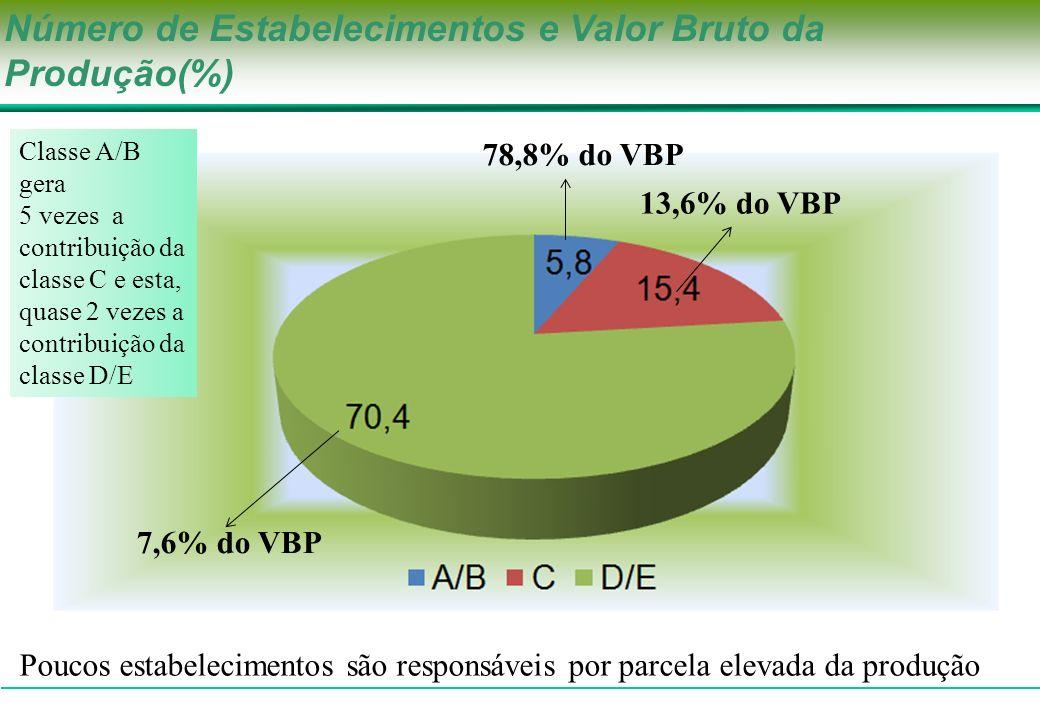 Número de Estabelecimentos e Valor Bruto da Produção(%) 7,6% do VBP 78,8% do VBP 13,6% do VBP Poucos estabelecimentos são responsáveis por parcela ele