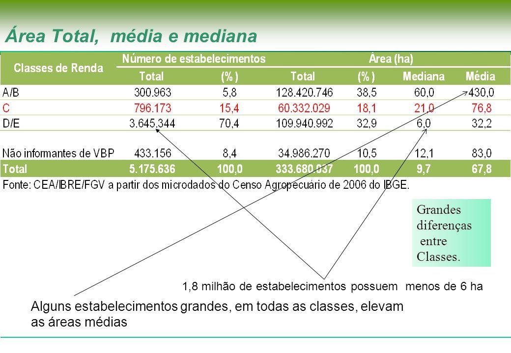 796.173 1,8 milhão de estabelecimentos possuem menos de 6 ha Área Total, média e mediana Alguns estabelecimentos grandes, em todas as classes, elevam
