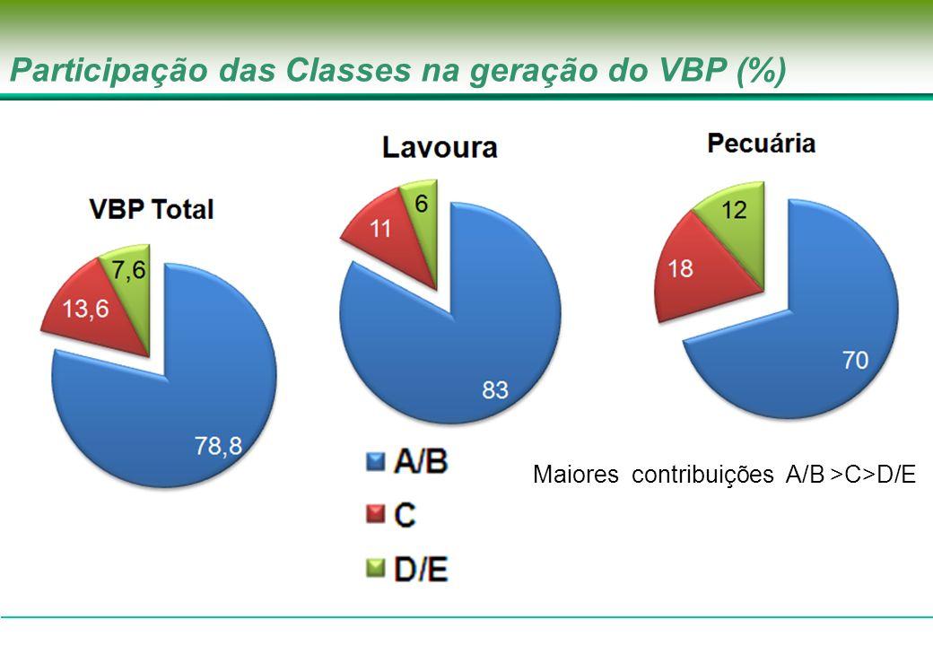 Composição do valor bruto da produção agropecuária de cada classe (em %) À medida que os níveis de renda decrescem, a participação do valor bruto da produção da pecuária no valor Bruto total aumenta.