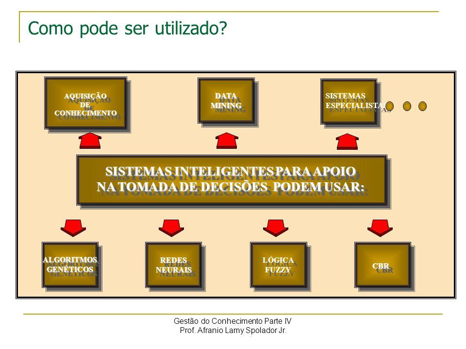 Gestão do Conhecimento Parte IV Prof.Afranio Lamy Spolador Jr.