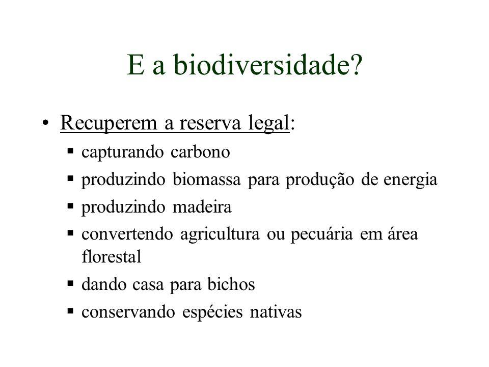 E a biodiversidade? Recuperem a reserva legal: capturando carbono produzindo biomassa para produção de energia produzindo madeira convertendo agricult