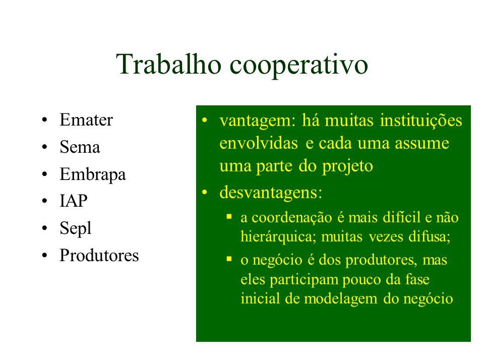 Trabalho cooperativo Emater Sema Embrapa IAP Sepl Produtores vantagem: há muitas instituições envolvidas e cada uma assume uma parte do projeto desvan