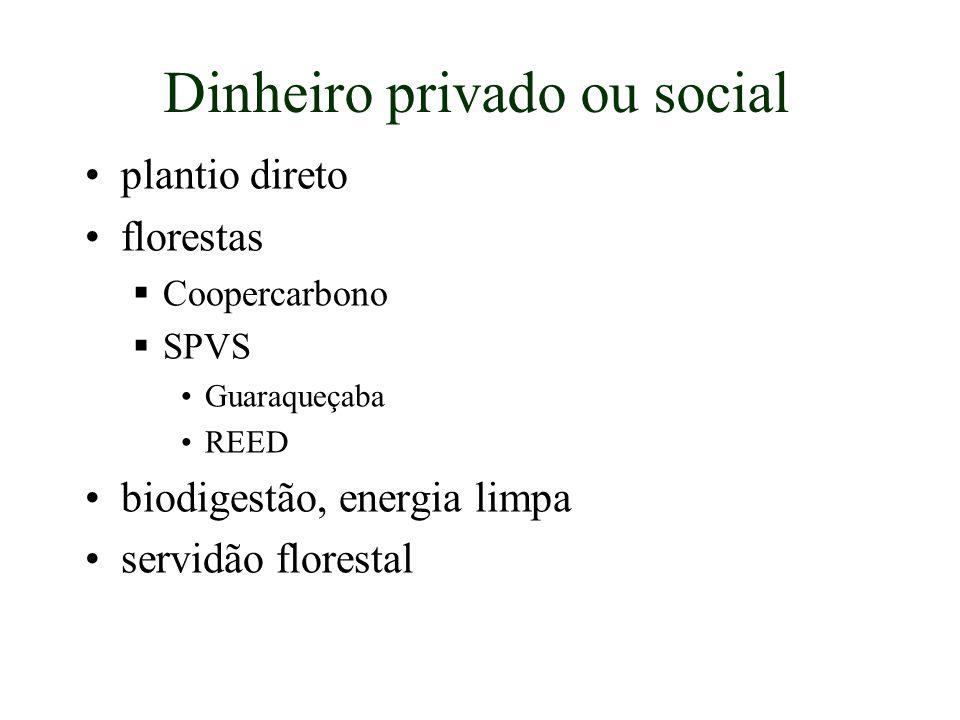 Dinheiro privado ou social plantio direto florestas Coopercarbono SPVS Guaraqueçaba REED biodigestão, energia limpa servidão florestal