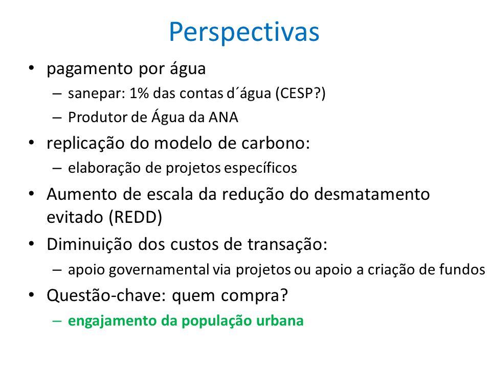 Perspectivas pagamento por água – sanepar: 1% das contas d´água (CESP?) – Produtor de Água da ANA replicação do modelo de carbono: – elaboração de pro