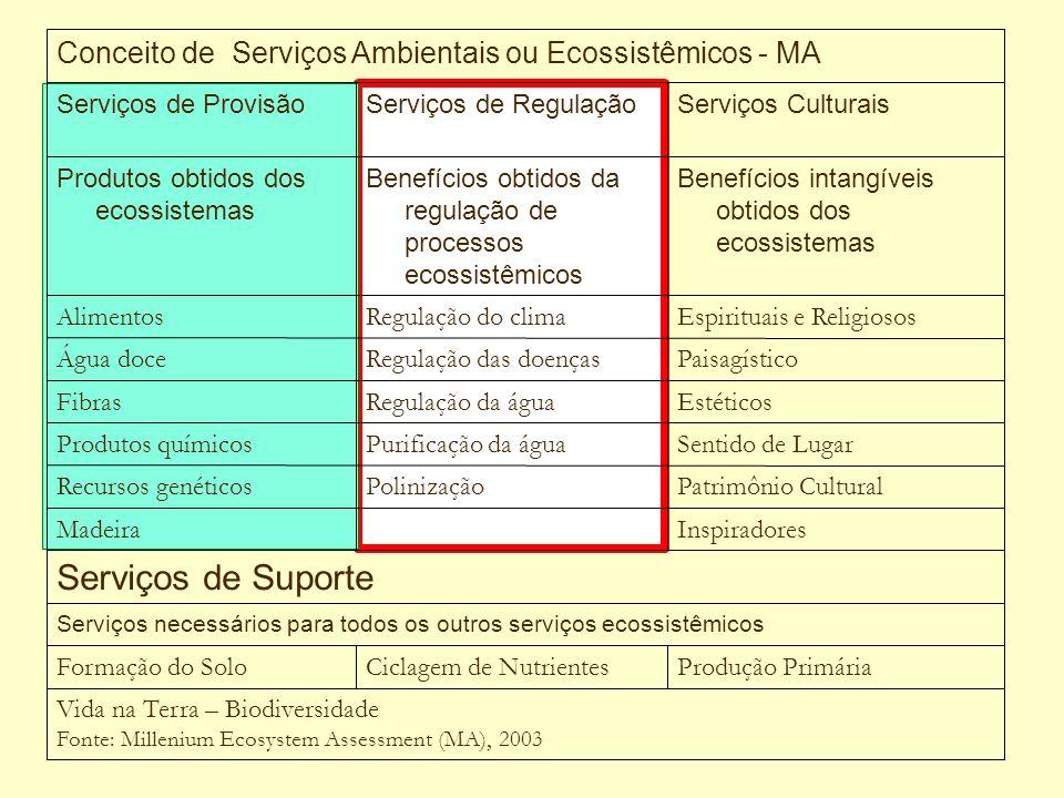 Vida na Terra – Biodiversidade Fonte: Millenium Ecosystem Assessment (MA), 2003 Produção PrimáriaCiclagem de NutrientesFormação do Solo Serviços neces