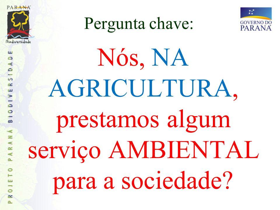 Pergunta chave: Nós, NA AGRICULTURA, prestamos algum serviço AMBIENTAL para a sociedade?