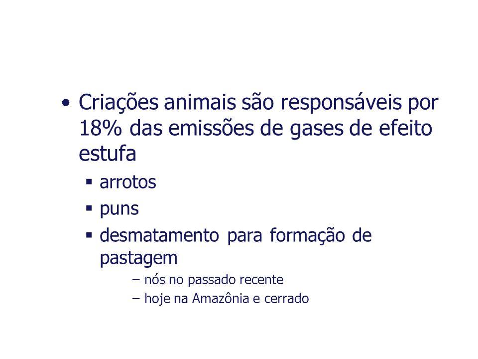Criações animais são responsáveis por 18% das emissões de gases de efeito estufa arrotos puns desmatamento para formação de pastagem –nós no passado r