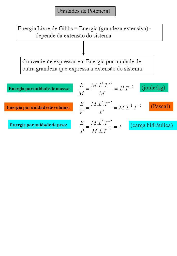 Unidades de Potencial Energia Livre de Gibbs = Energia (grandeza extensiva) - depende da extensão do sistema Conveniente expressar em Energia por unid