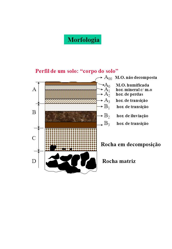 Perfil de um solo: corpo do solo A A 00 M.O. não decomposta A 0 M.O. humificada A 1 hor. mineral c/ m.o A 2 hor. de perdas A 3 hor. de transição B B 1