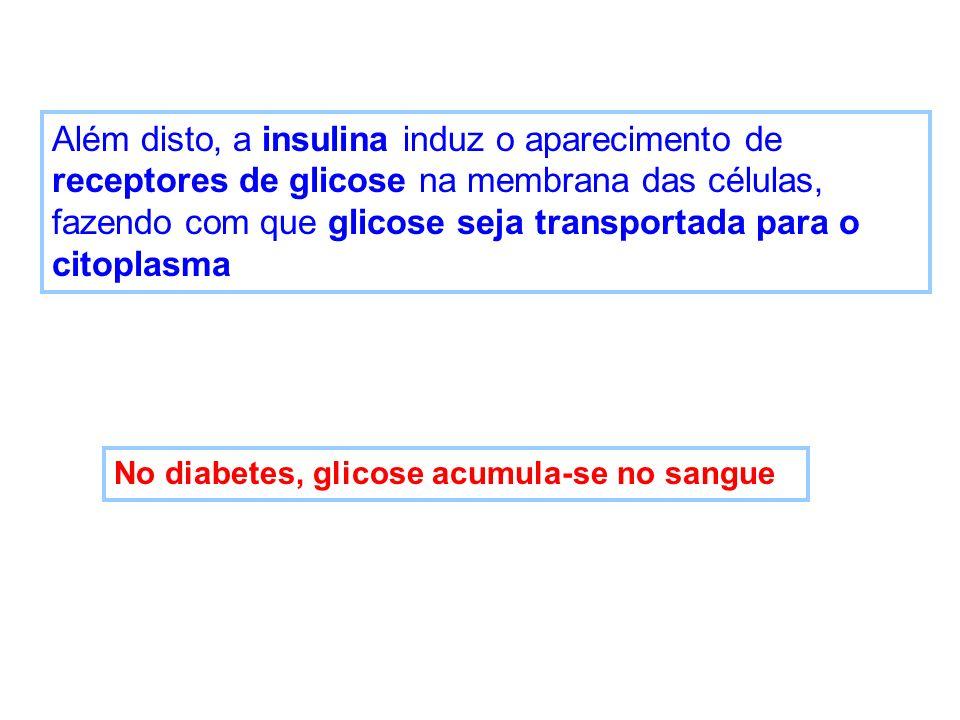 Além disto, a insulina induz o aparecimento de receptores de glicose na membrana das células, fazendo com que glicose seja transportada para o citopla