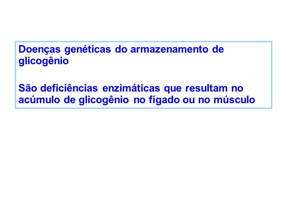 Doenças genéticas do armazenamento de glicogênio São deficiências enzimáticas que resultam no acúmulo de glicogênio no fígado ou no músculo