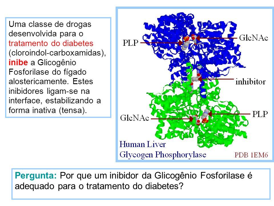 Pergunta: Por que um inibidor da Glicogênio Fosforilase é adequado para o tratamento do diabetes? Uma classe de drogas desenvolvida para o tratamento