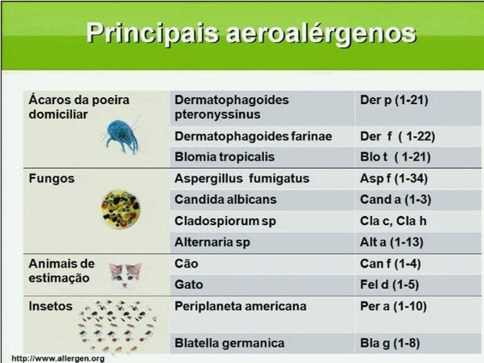 QUAIS SÃO OS PRINCIPAIS ALÉRGENOS INALÁVEIS NO BRASIL E NA AMÉRICA LATINA Climed-APReis