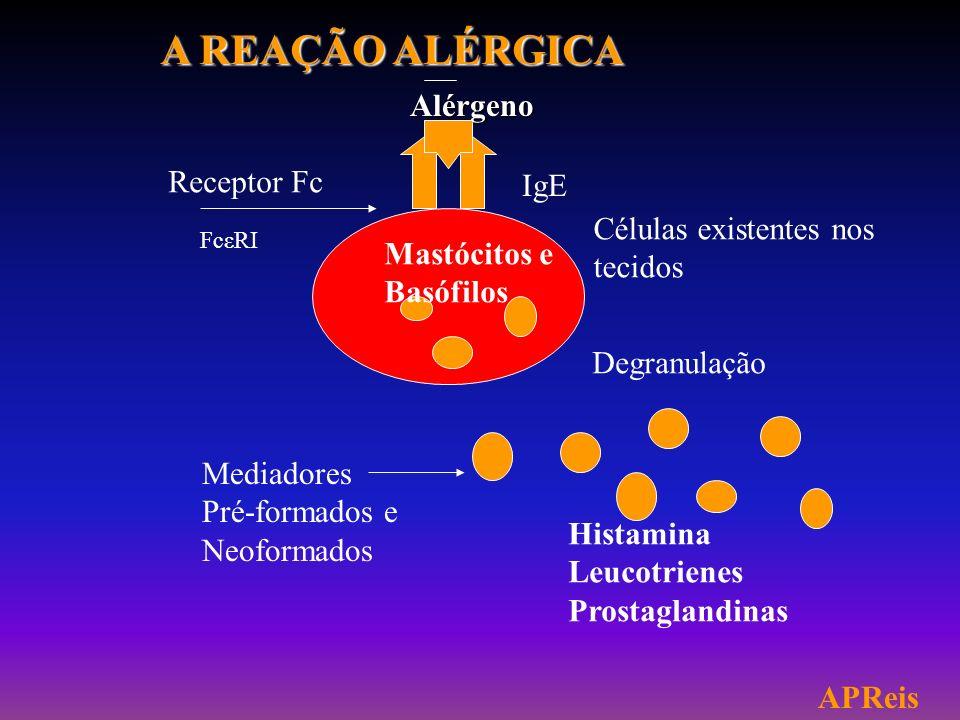 FUNBACNEW COMPOSTO LÍQUIDO A BASE DE ISOTIAZOLONA, AMINAS,SILICONES,GLICÓIS E ATIVADOR NATURAL: BACTERICIDA,FUNGICIDA E ANTIÁCAROS (Adolfo Lutz-TECPAR