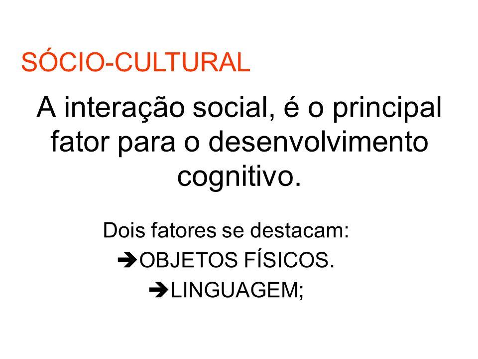 A interação social, é o principal fator para o desenvolvimento cognitivo.