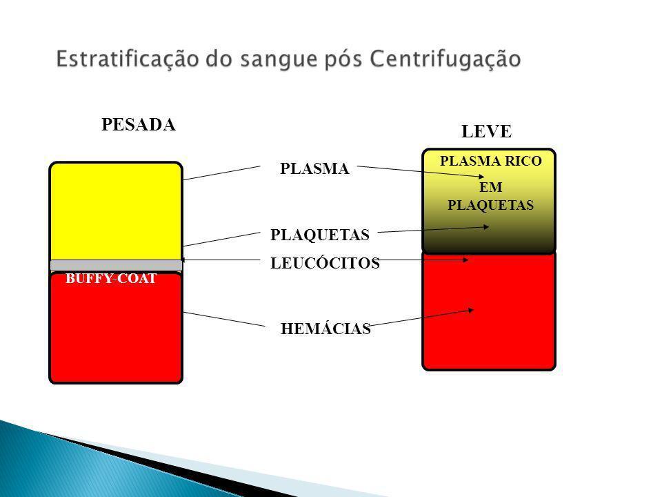 PLASMA HEMÁCIAS PLAQUETAS LEUCÓCITOS PLASMA RICO EM PLAQUETAS PESADA BUFFY-COAT LEVE BUFFY-COAT
