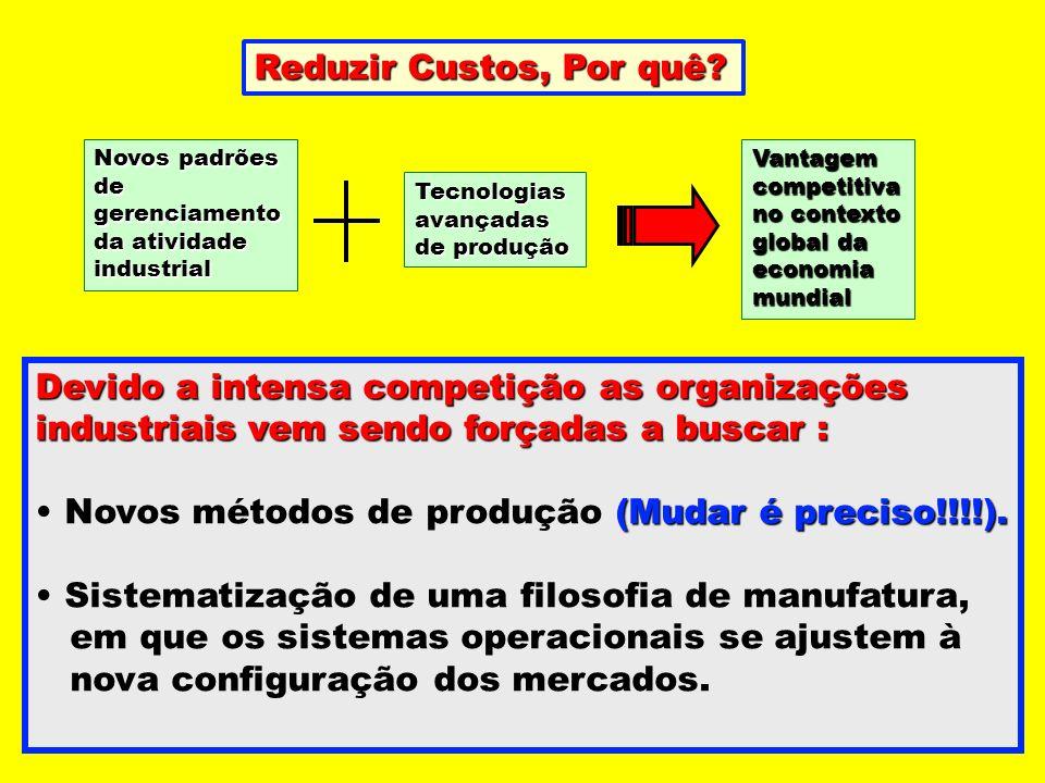 Novos padrões de gerenciamento da atividade industrial Vantagem competitiva no contexto global da economia mundial Tecnologias avançadas de produção D