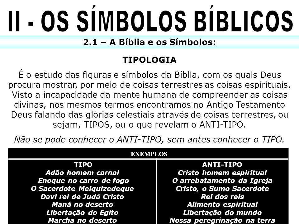 TIPOLOGIA É o estudo das figuras e símbolos da Bíblia, com os quais Deus procura mostrar, por meio de coisas terrestres as coisas espirituais. Visto a