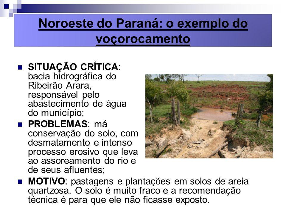 Noroeste do Paraná: o exemplo do voçorocamento SITUAÇÃO CRÍTICA: bacia hidrográfica do Ribeirão Arara, responsável pelo abastecimento de água do munic
