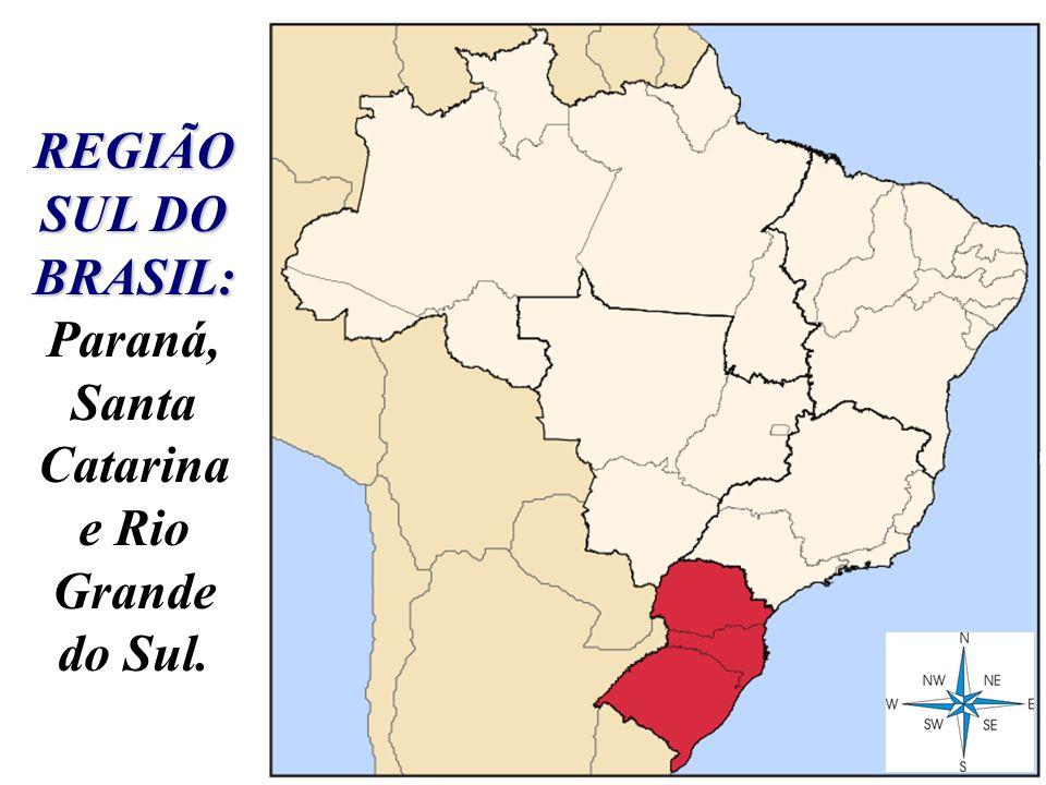 REGIÃO SUL DO BRASIL: REGIÃO SUL DO BRASIL: Paraná, Santa Catarina e Rio Grande do Sul.