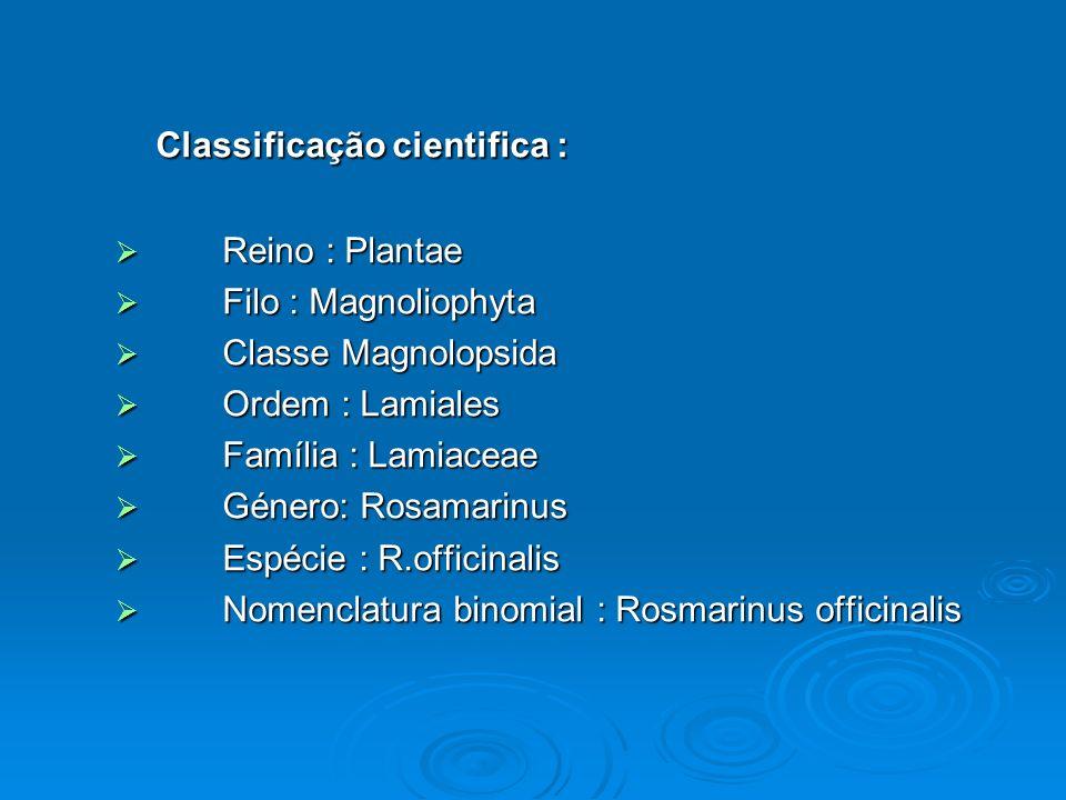 Classificação cientifica : Reino : Plantae Reino : Plantae Filo : Magnoliophyta Filo : Magnoliophyta Classe Magnolopsida Classe Magnolopsida Ordem : L