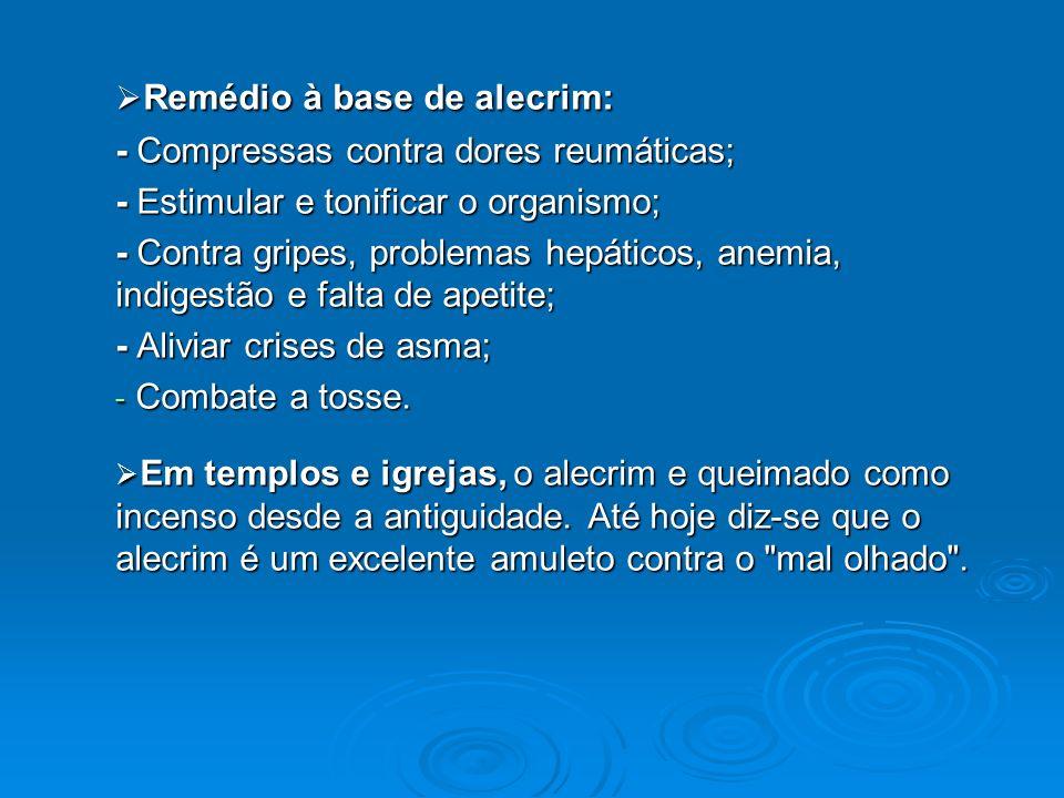 Remédio à base de alecrim: Remédio à base de alecrim: - Compressas contra dores reumáticas; - Estimular e tonificar o organismo; - Contra gripes, prob